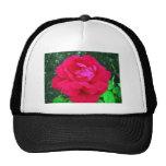 Rose#2 Hat