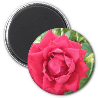 Rose 2 Inch Round Magnet