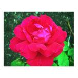 Rose#2 Invitación 10,8 X 13,9 Cm