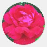 Rose#2 Pegatina Redonda