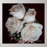 Rose 2 print