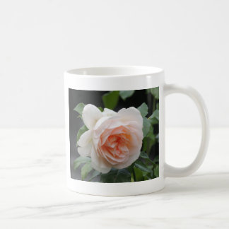 ROSE 4 COFFEE MUG
