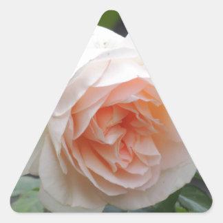 ROSE 4 TRIANGLE STICKER