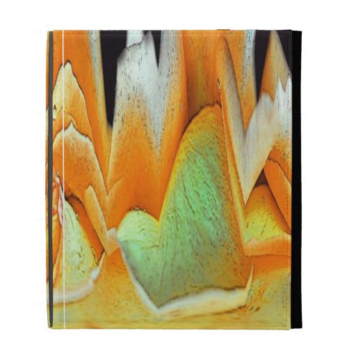 Rose Abstract iPad Case
