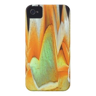 Rose Abstract iPhone 4 Case