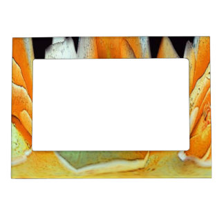 Rose Abstract Magnetic Picture Frame