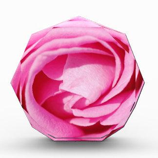 Rose Acrylic Award
