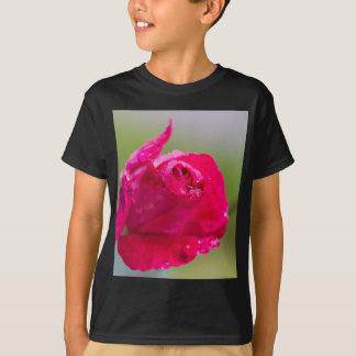 rose after the rain in the garden T-Shirt