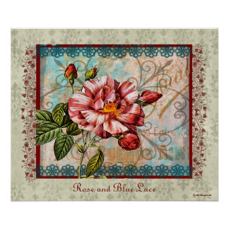 Rose and Blue Lace Poster