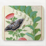 Rose and Polygonatum Mouse Pad