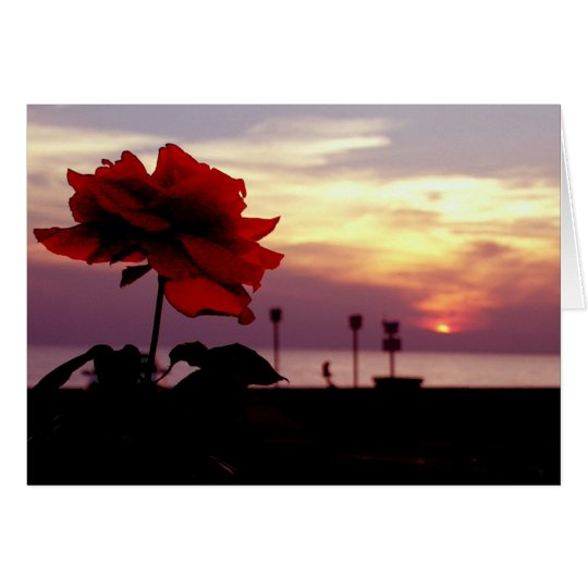 Rose and Sunset Blank Greeting Card
