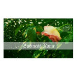 Rose and water spray Double-Sided standard business cards (Pack of 100)