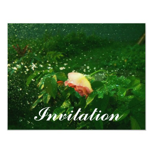 Rose and water spray 4.25x5.5 paper invitation card