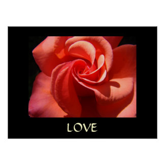 ROSE Art Print Spiral Rose Flower LOVE Valentine