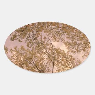 'Rose Autumn' Stickers