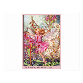 Rose-Bay Wilow-Herb Fairy Postcard