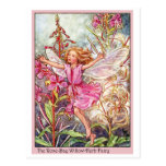 Rose-Bay Wilow-Herb Fairy Postcard