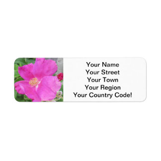 Rose Beach Plum Pink Label