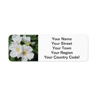 Rose Beach Plum White Label