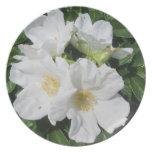 Rose Beach Plum White Plate