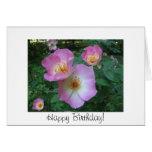 Rose birthday card