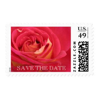 Rose Birthday Save the Date Custom Postage