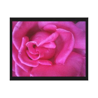 Rose Bloom Canvas