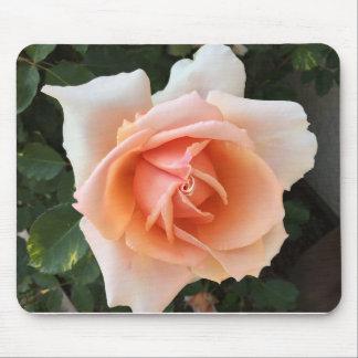 Rose Bloom - Mousepad