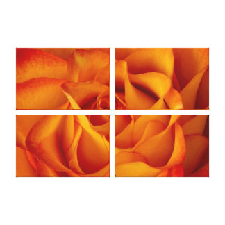 Rose Bloom Wrapped Canvas