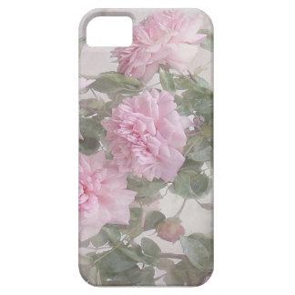 Rose blooms iPhone SE/5/5s case