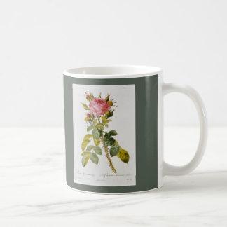 Rose Botanical Print - 'Rosa Bifera' by  Redoute Coffee Mug