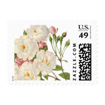 Rose Botanical White Roses Postage Stamp