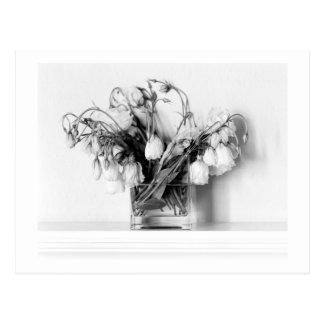 Rose Bouquet in Black & White Postcard