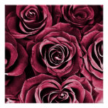 Rose Bouquet in Red Posters