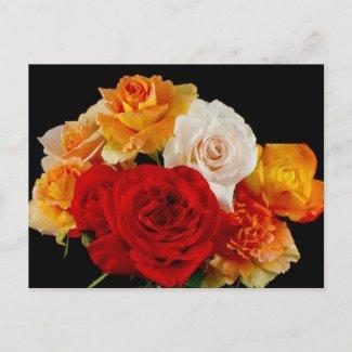 Rose Bouquet Postcards
