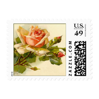 Rose Branch Postage Stamps