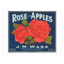 Rose Brand Apples Vintage Crate Label Postcard