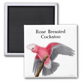 Rose Breasted Cockatoo Magnet