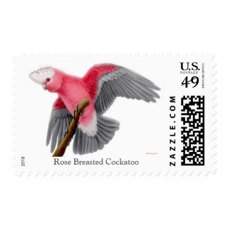 Rose Breasted Cockatoo Postage