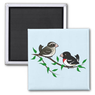 Rose-breasted Grosbeak Couple 2 Inch Square Magnet