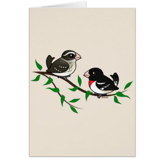 Rose-breasted Grosbeak Couple Stationery Note Card