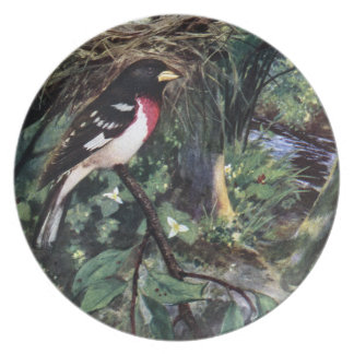 Rose-Breasted Grosbeak & His Nest of Eggs Melamine Plate
