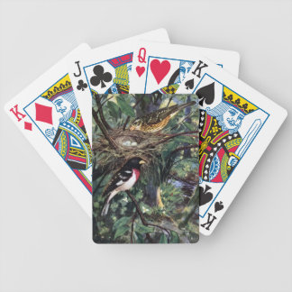 Rose-Breasted Grosbeaks and Their Nest Bicycle Playing Cards