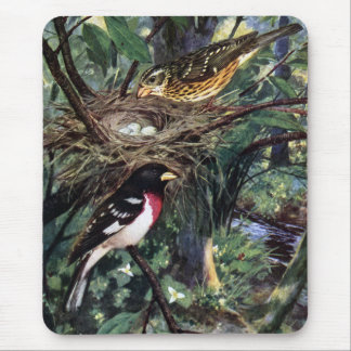 Rose-Breasted Grosbeaks and Their Nest of Eggs Mouse Pad