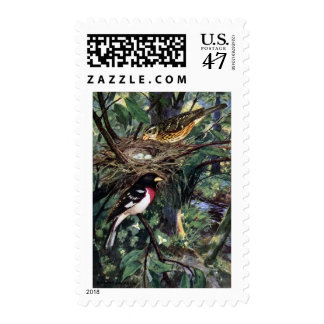Rose-Breasted Grosbeaks and Their Nest of Eggs Postage