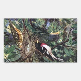 Rose-Breasted Grosbeaks and Their Nest of Eggs Rectangular Sticker