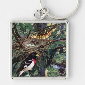 Rose-Breasted Grosbeaks and Their Nest of Eggs Silver-Colored Square Keychain