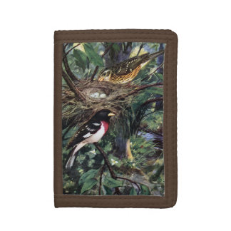 Rose-Breasted Grosbeaks and Their Nest Trifold Wallet