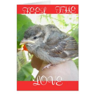 Rose Briar Greeting Card