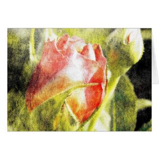 Rose Bud Card